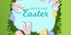 Have a wild Easter
