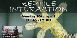 Reptile Interaction 15.04.18