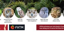 FXTM and Andrey and Julia Dashin's Foundation continue to take care of the owls in the Pafos Zoo